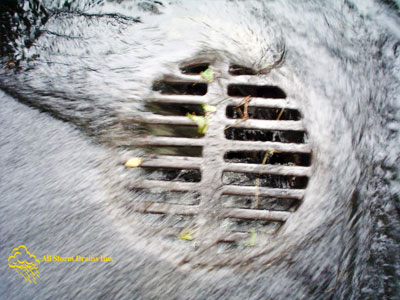All Storm Drains Inc. Storm Water Management | Suffolk County | New York | George@AllStormDrains.com